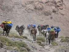 Aconcagua Memories