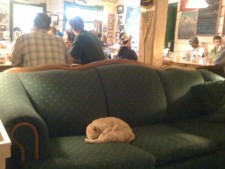 The Talkeetna Hang